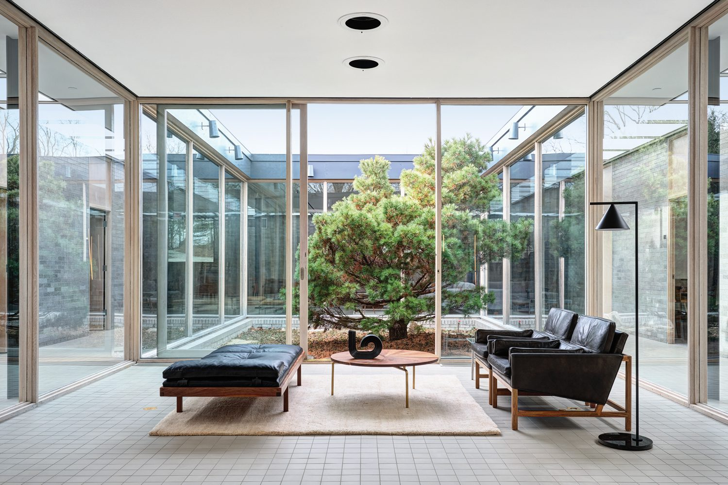 A recently planted Japanese dwarf white pine in the open-air courtyard, which adjoins a conference room with Wood Frame lounge chairs. Photography by Michael Biondo.