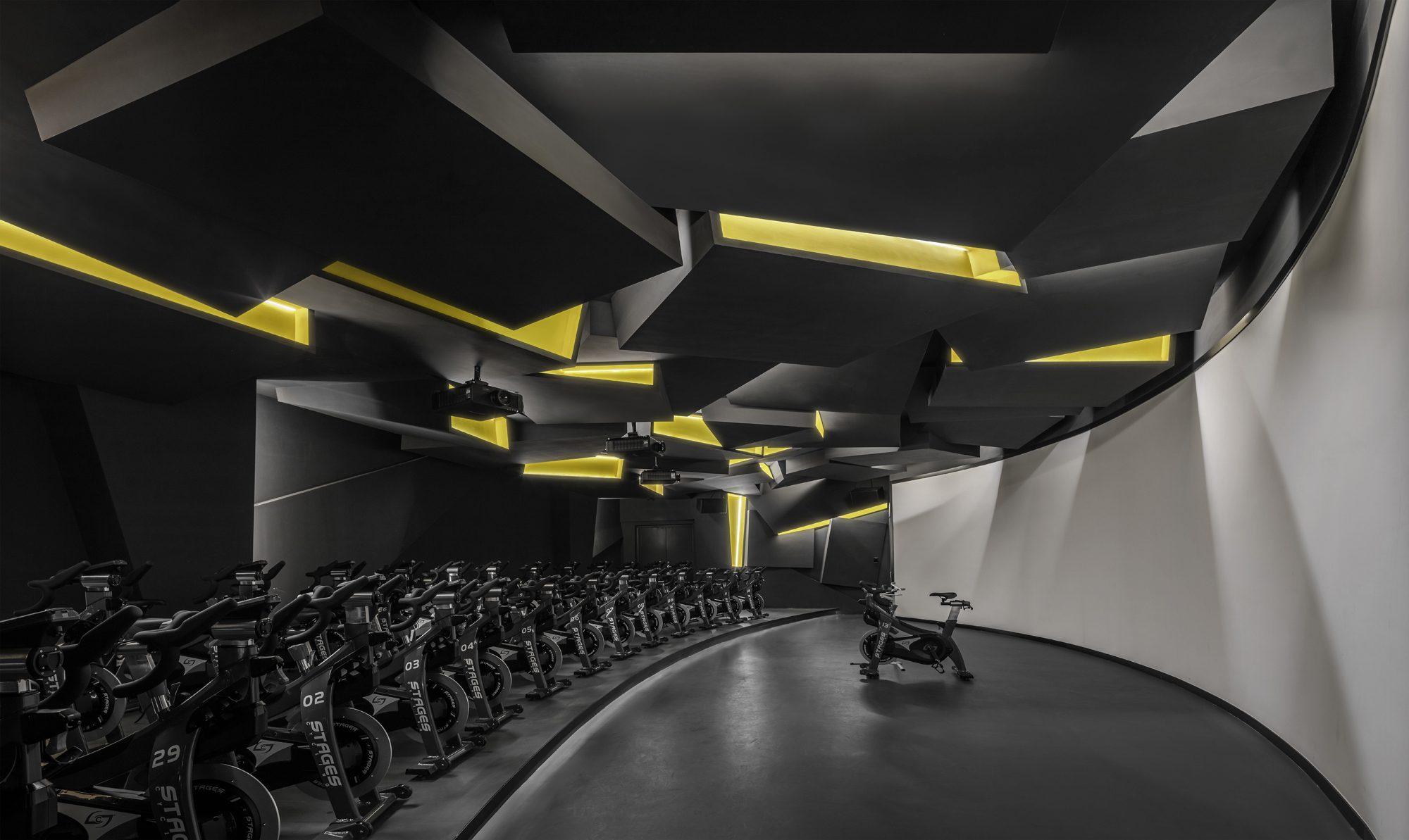 Fusion Fitness Q-Plex Premium Club