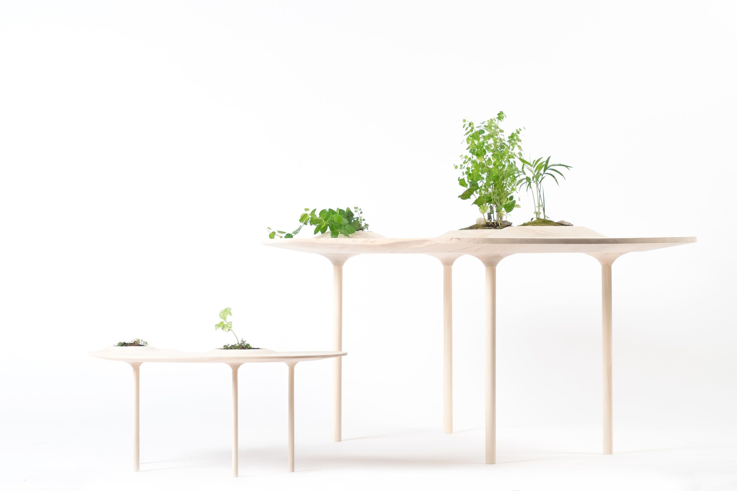 PokoPoko Table