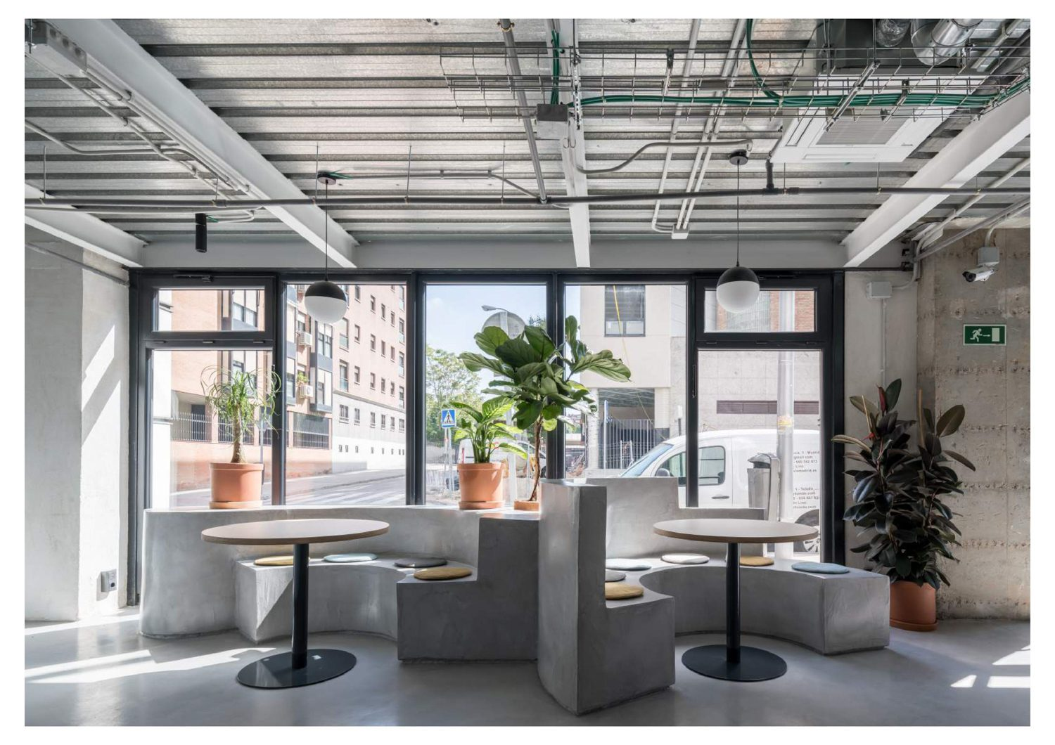 Sunlight floods the kitchen area's mix of concrete and greenery.