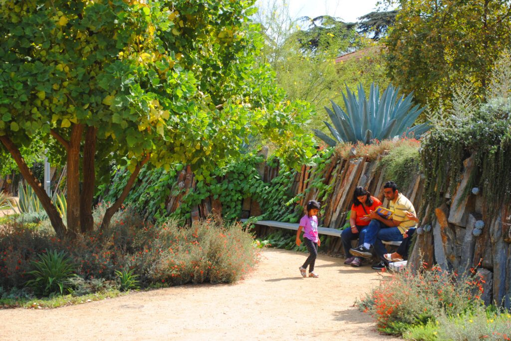 A natural landscape with trees and various grasses and plants at the Natural History Museum of L.A.